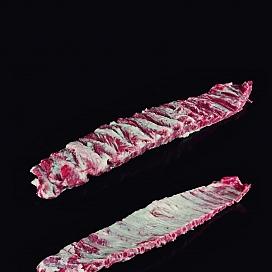 신선한 이베리아 돼지 허리뼈