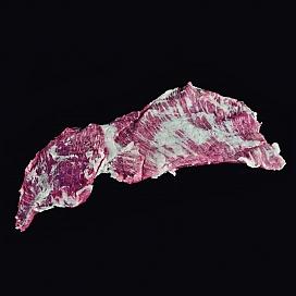 Свежая мясная прослойка шпика иберийской свиньи «Secreto»